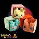 Rangement Pokemon